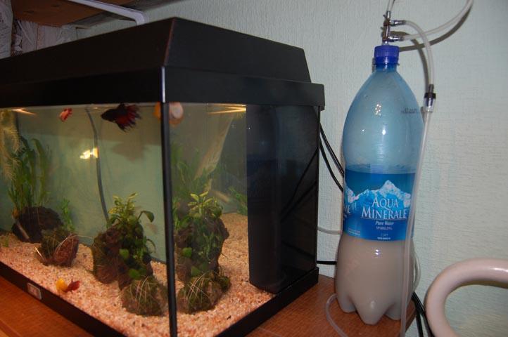 В аквариуме система со2 своими руками фото